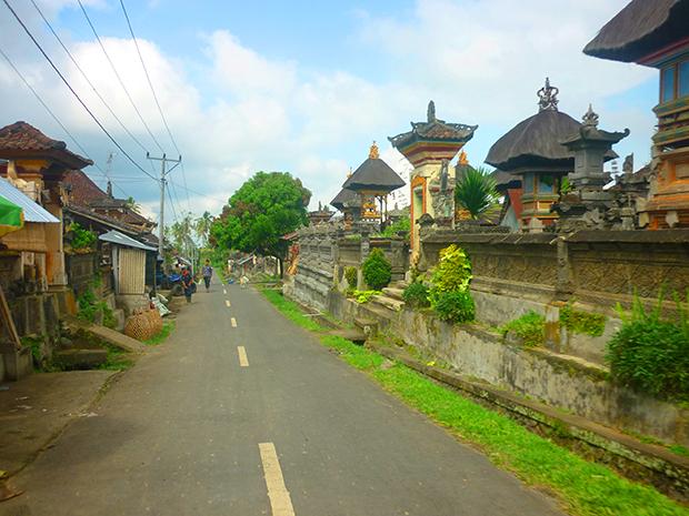 舗装路(村の中)