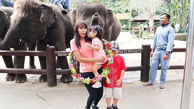 象との記念写真