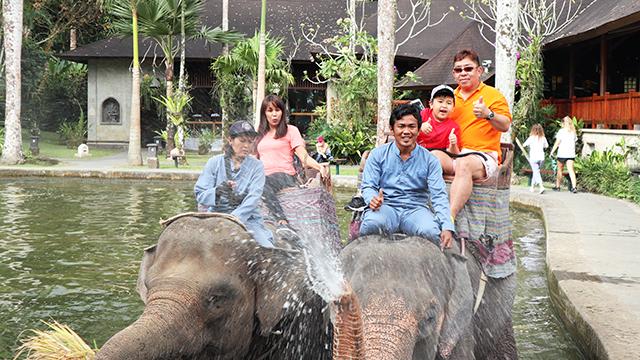 象との記念撮影